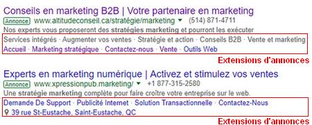 Exemples d'extensions d'annonces Google AdWords